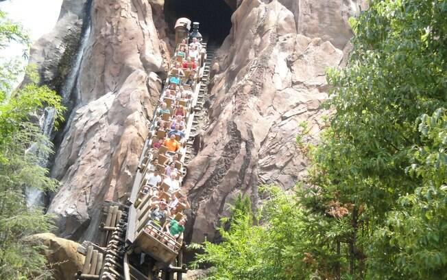 Expedition Everest é uma das montanhas-russas radicais do Animal Kingdom